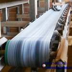 Chemical Resistance Conveyor Belt